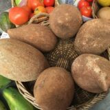A Word On Food: Mamey Sapote